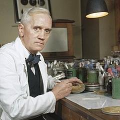 The Invention Of Penicillin