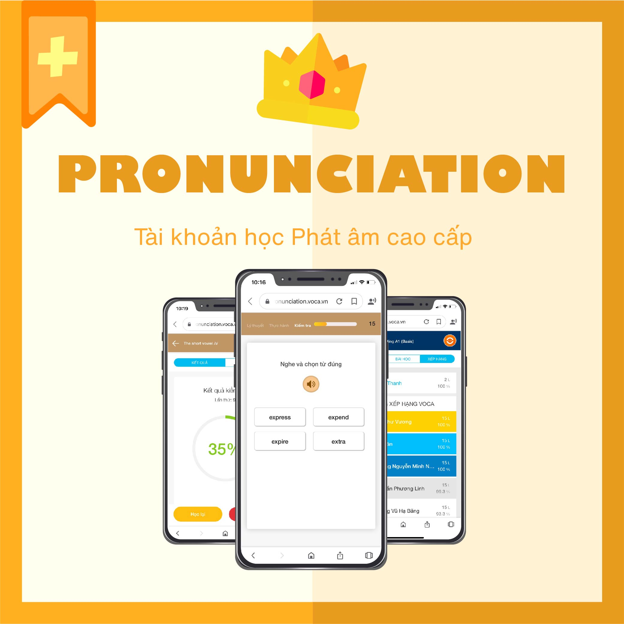 PRONUNCIATION VIP PLUS