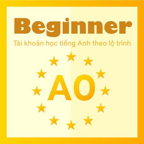 A0: For Beginner